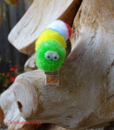 Klammerraupen auf einem Holzbaum
