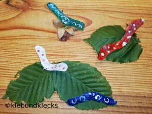 Ahorntiere: Käfer aus Ahornsamen