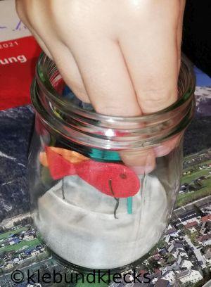 Glasaquarium bestücken